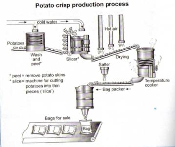Ielts process writing